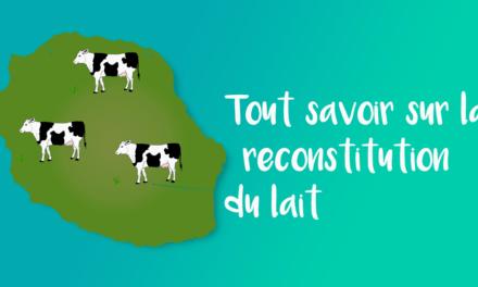 Tout savoir sur la reconstitution du lait